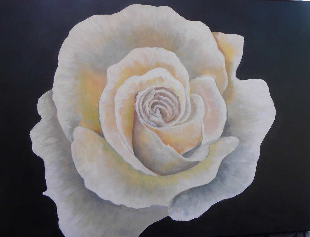 """White Rose"" by Cheryl Buhrman, 18x24in, acrylic on canvas (2017), $250 