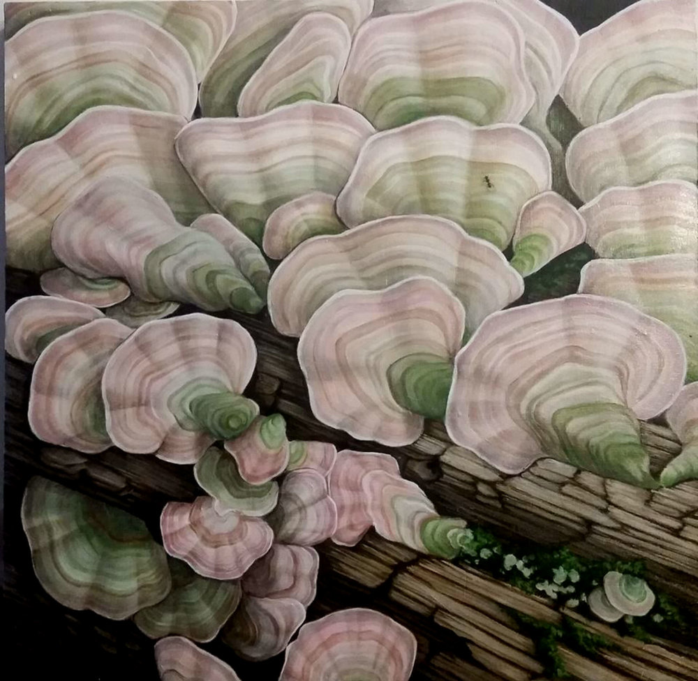 """Pink and Green Mushrooms"" by Devan Horton, 24 x 24in, oil on panel (2017), $800 