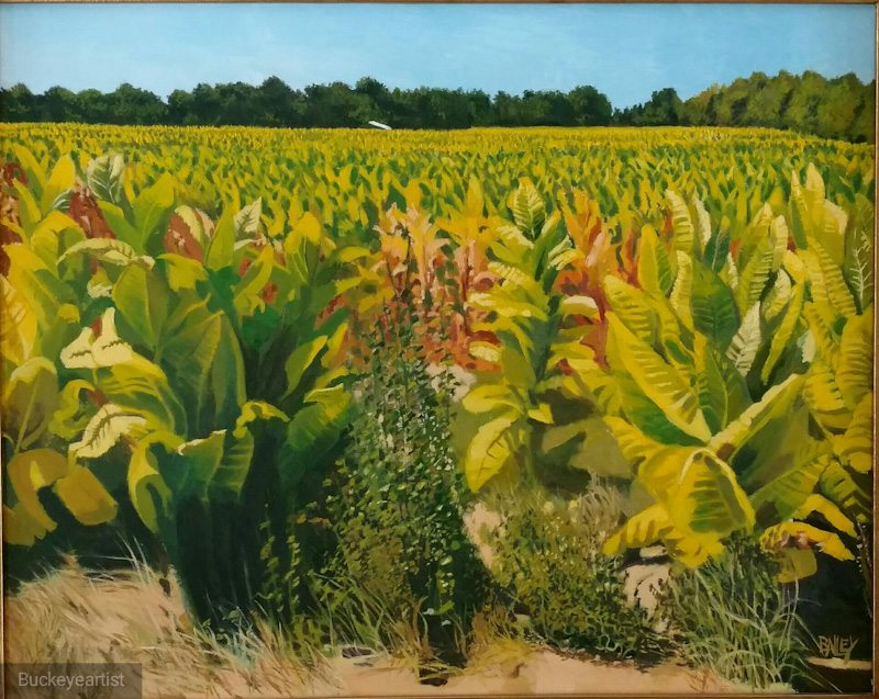 """King Tobacco"" by Brian Bailey, Oil on canvas, 26x30in, 2016, POR"
