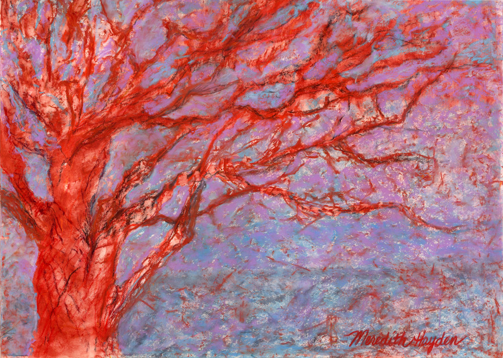 """Mystic Branches"" by Meredith Hayden, Chalk Pastel and water on sanded paper, 30x24in, 2014, $750"