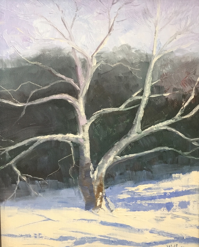 """Snow & Sycamore"" by Amy Welborn, Oil, 8x10in, 2018, $400"