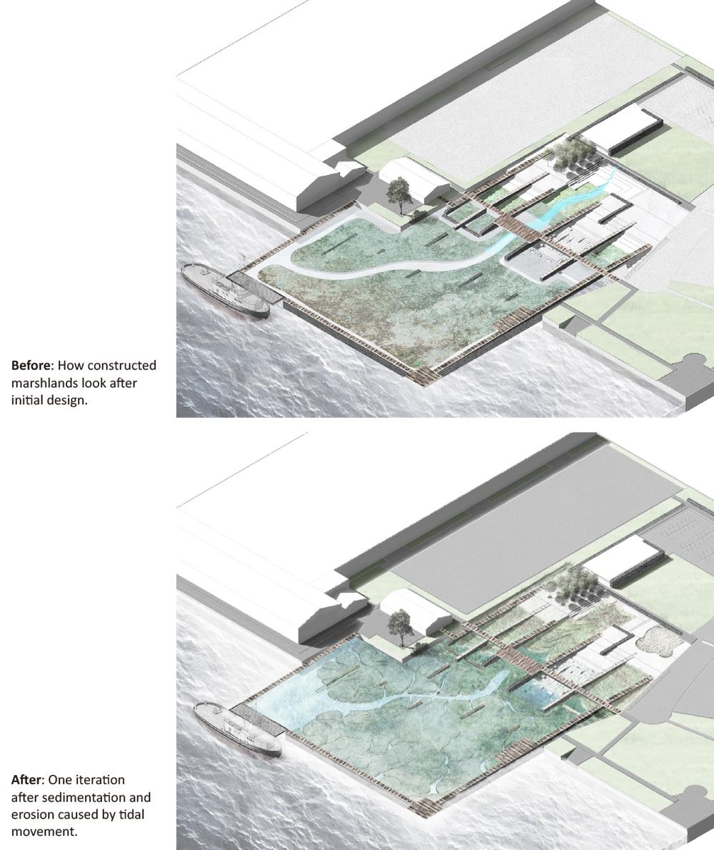 Tidal Gardens (Yang Liu)-6.jpg