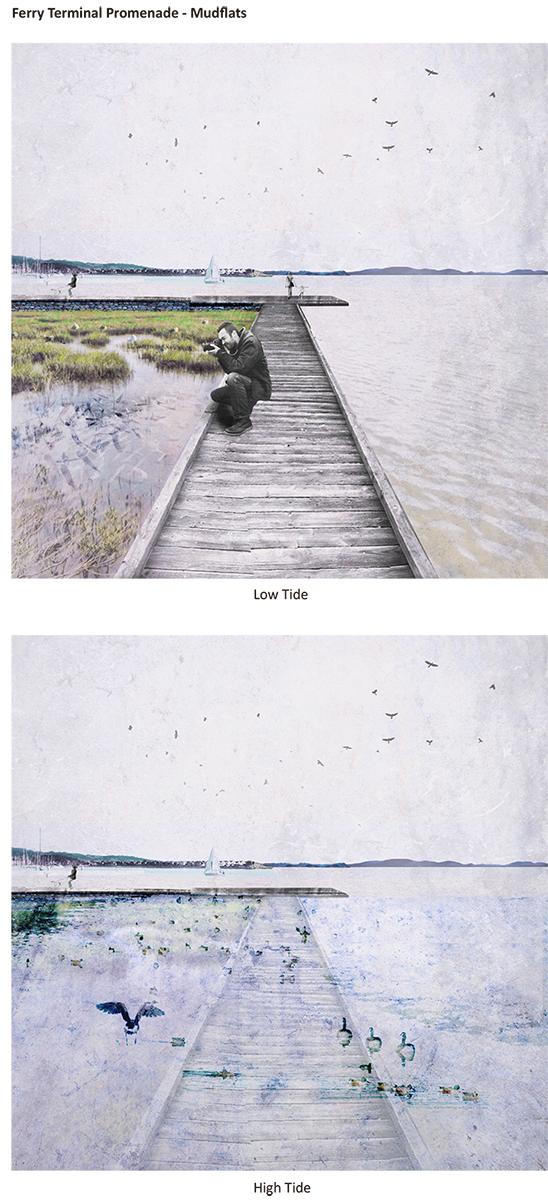 Tidal Gardens (Yang Liu)-12.jpg