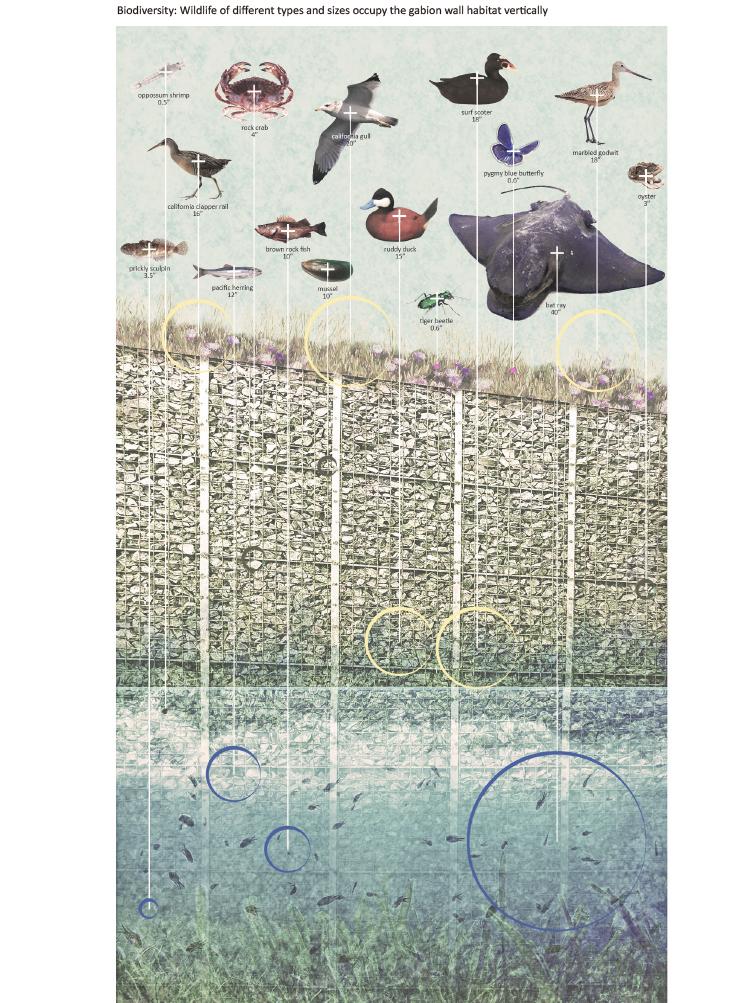 Tidal Gardens (Yang Liu)-16.jpg