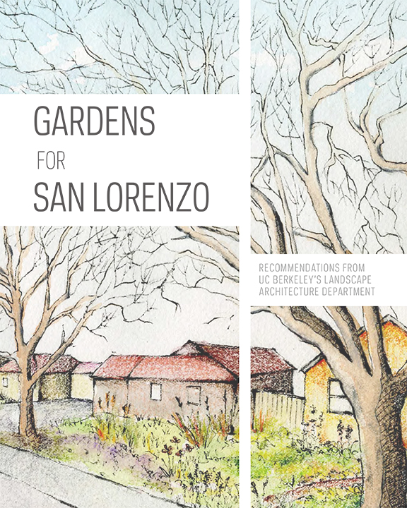 Gardens For San Lorenzo: Recommendations From UC Berkeleyu0027s Landscape  Architecture Department