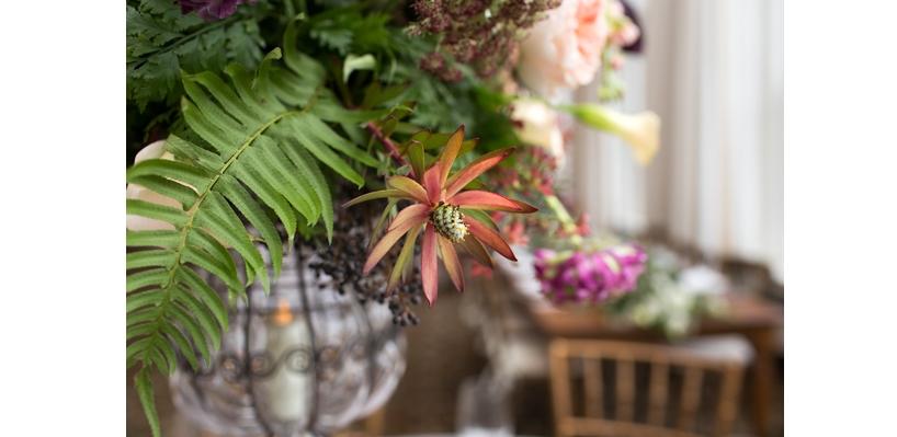 massachusetts florist