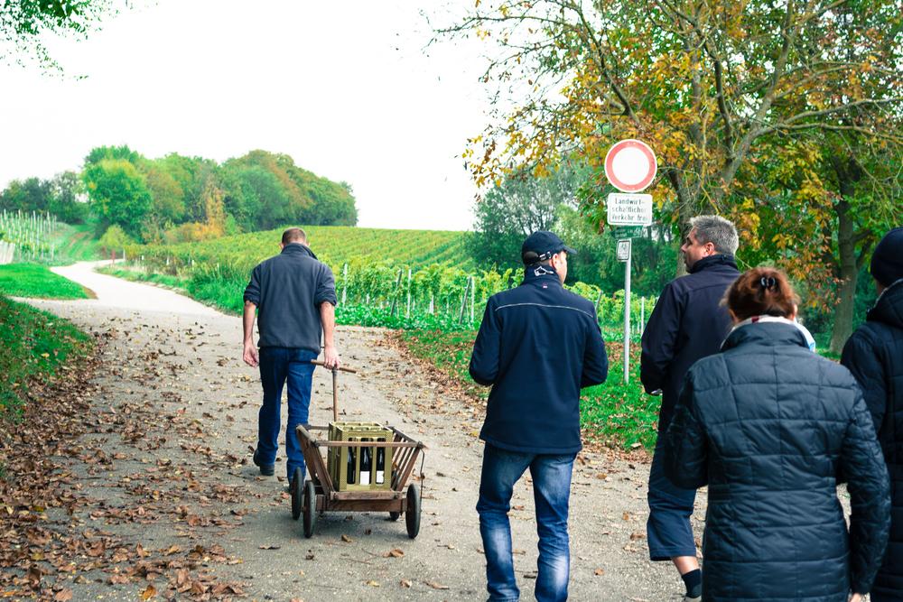 35 mm-20151017-151709- Weingut Pfalz.jpg