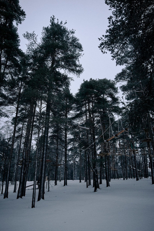 15 mm - 2019-01-05 14.02.01 - Oulu City.jpg