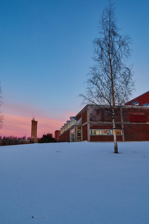 15 mm - 2019-01-13 09.53.49 - Oulu Week 2 Mix.jpg