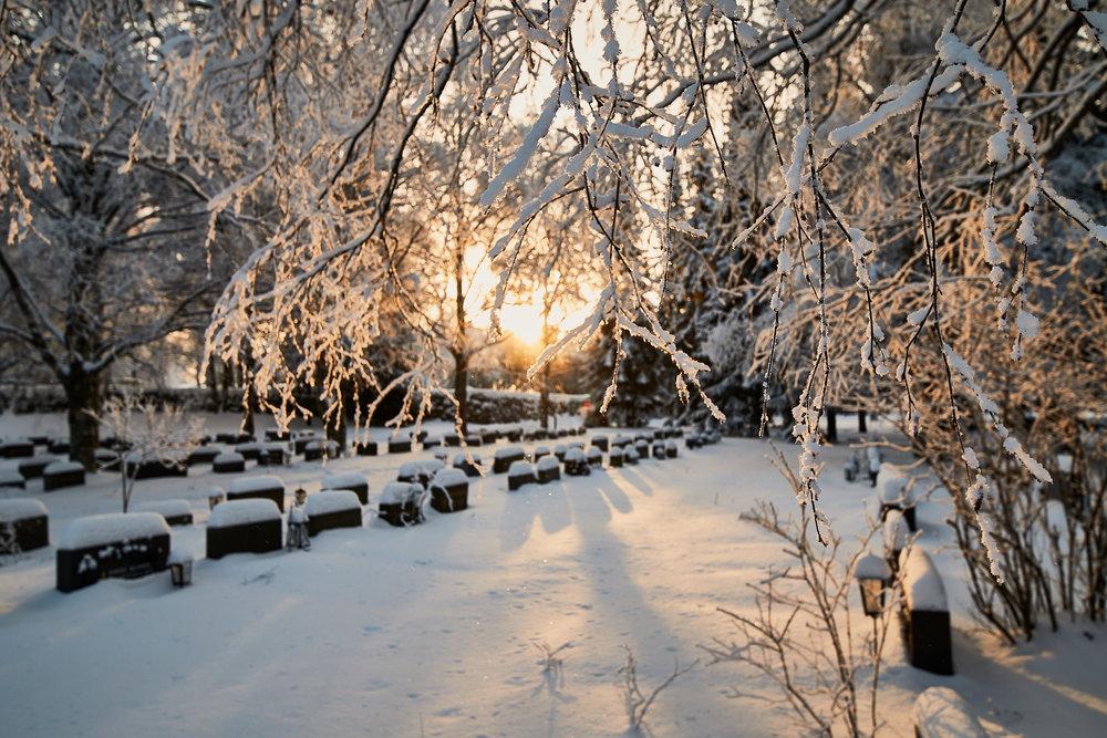 15 mm - 2019-01-24 13.00.15 - Oulu Week 4 Mix.jpg
