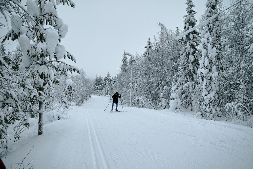 15 mm - 2019-02-09 15.22.19 - Oulu Week 6 Syote.jpg