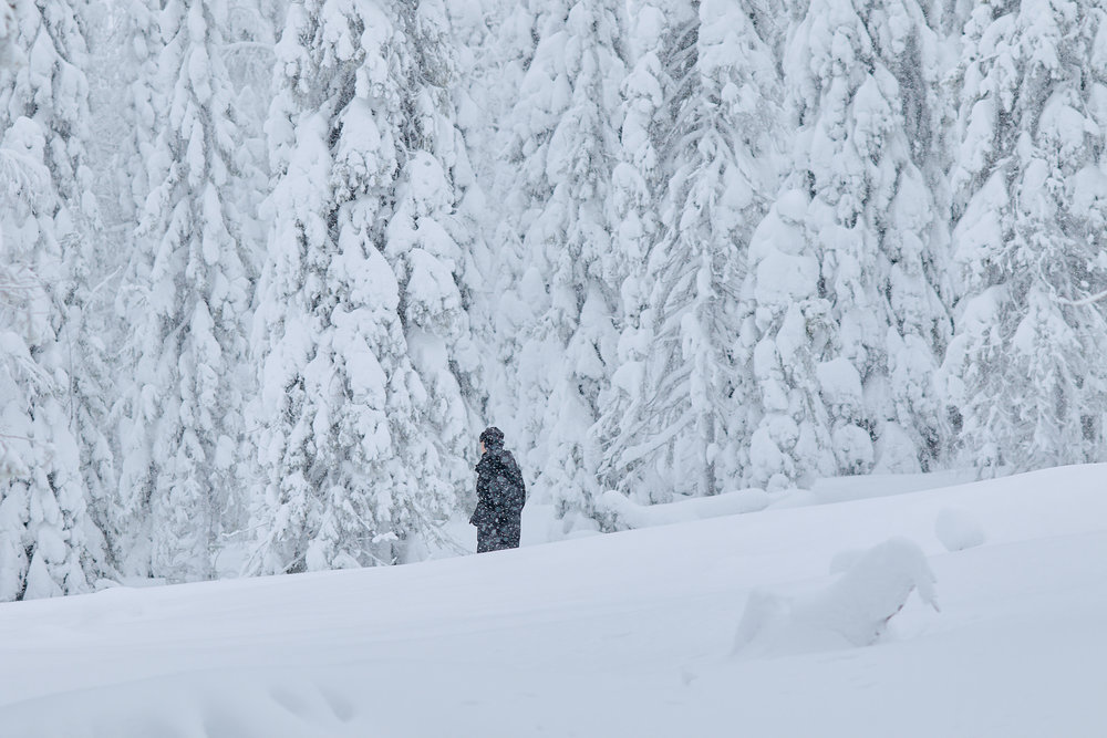 135 mm - 2019-02-10 11.36.58 - Oulu Week 6 Syote.jpg