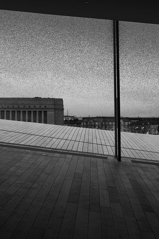 35 mm - 2019-03-31 12.24.42 - Helsinki Anne.jpg