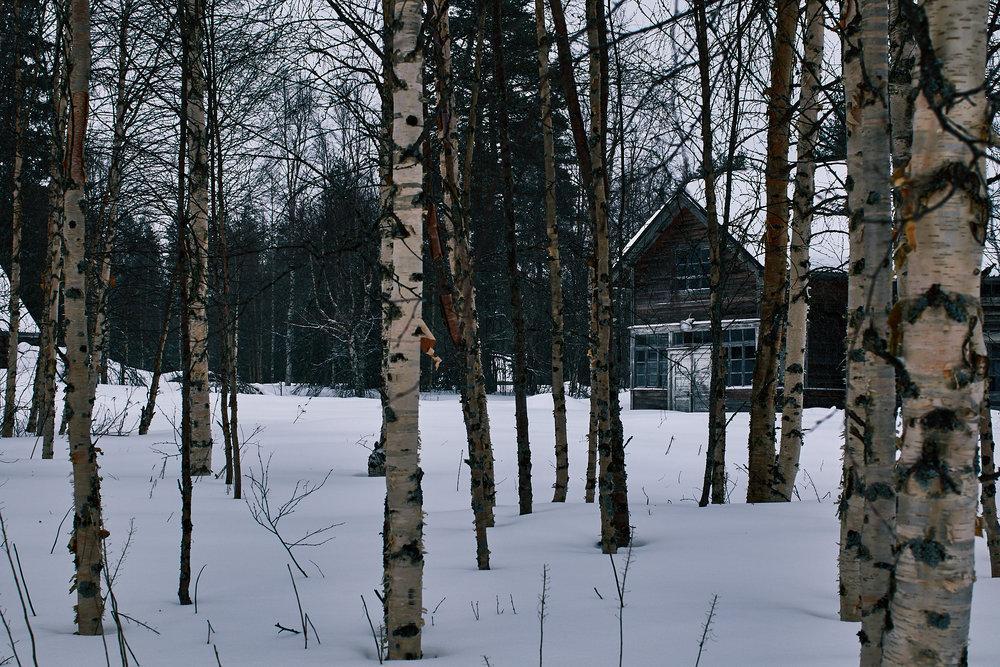 35 mm - 2019-03-08 12.04.14 - Oulu Marvin Timo.jpg