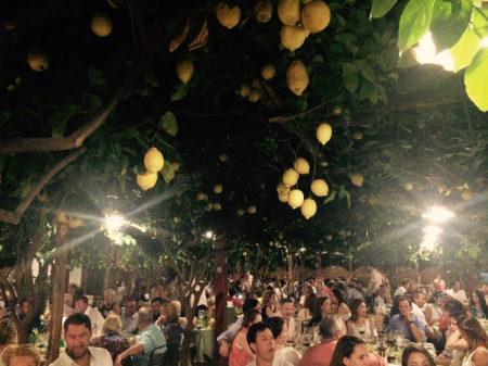 This is at Da Paolino, where the dining room is under a sea of lemon trees.