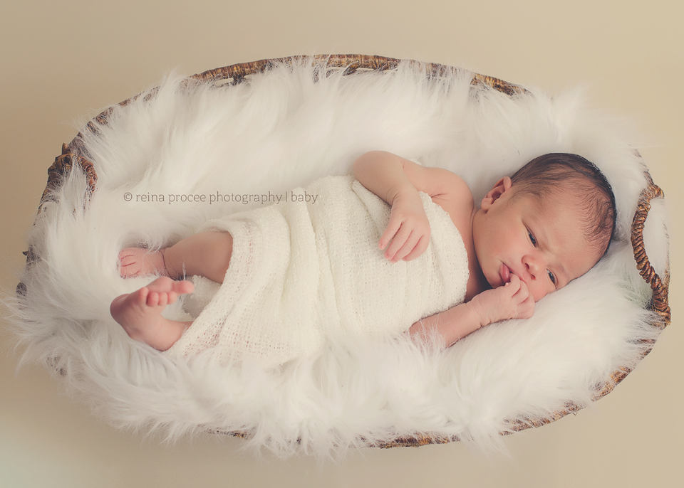 newborn baby boy montreal south shore photographer
