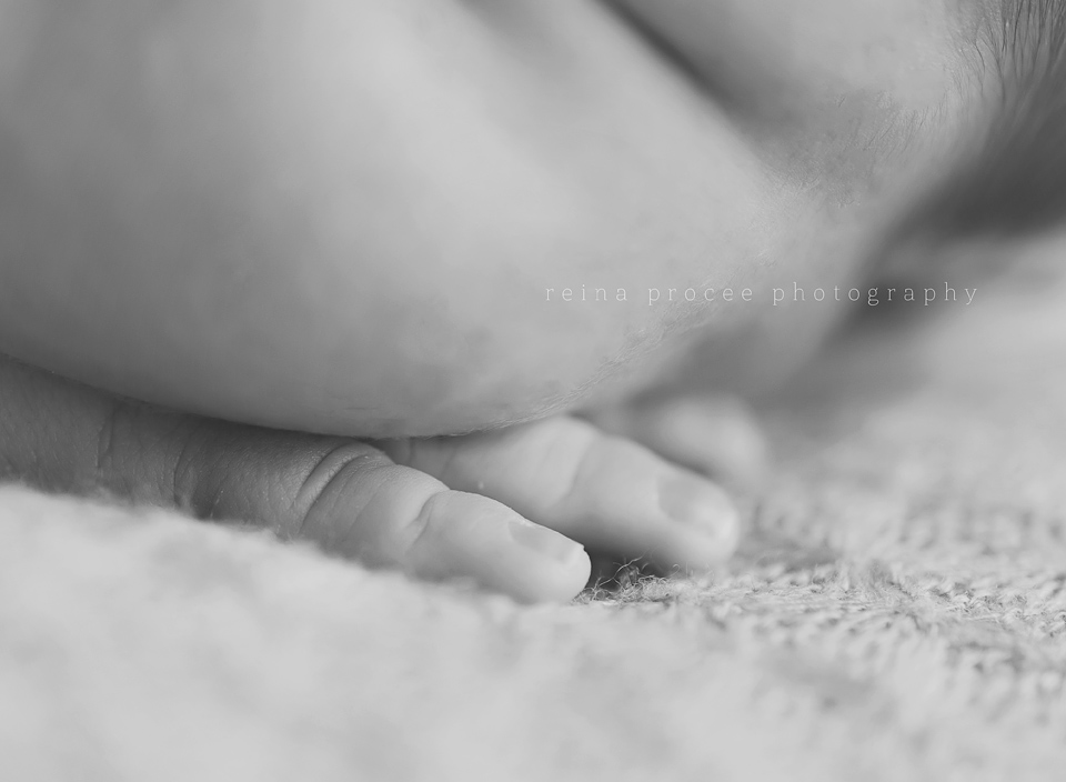 black and white macro of newborn fingers