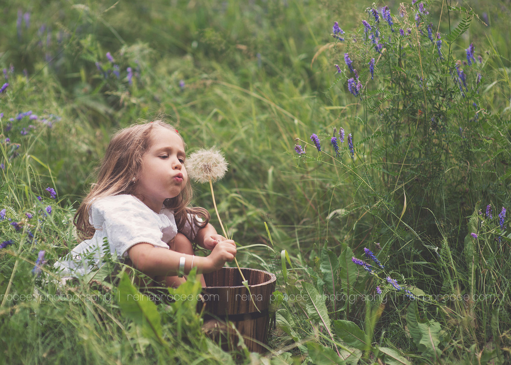 little girl siting in a bucket blowing on a weed