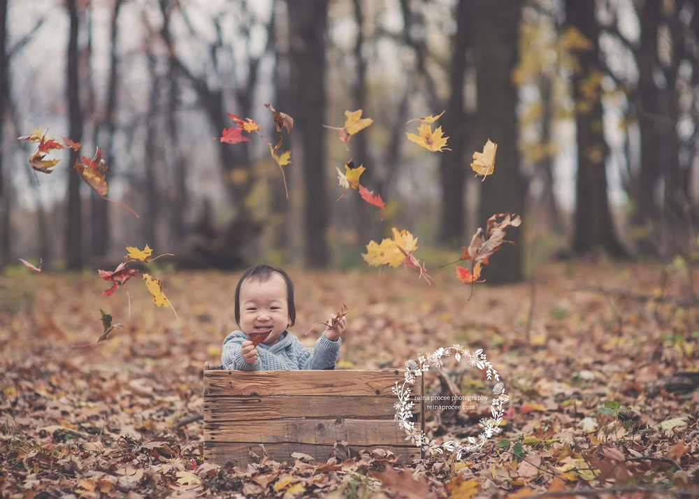 boy in a crate with fall leaves thrown around him