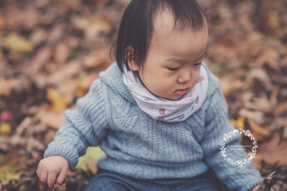little boy with blue sweater sitting in leaves