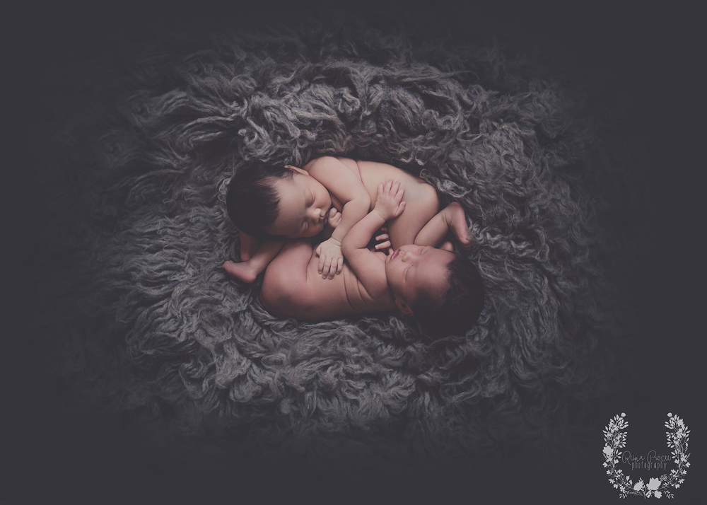 montreal-photographer-baby-pictures-photos-twins07.png