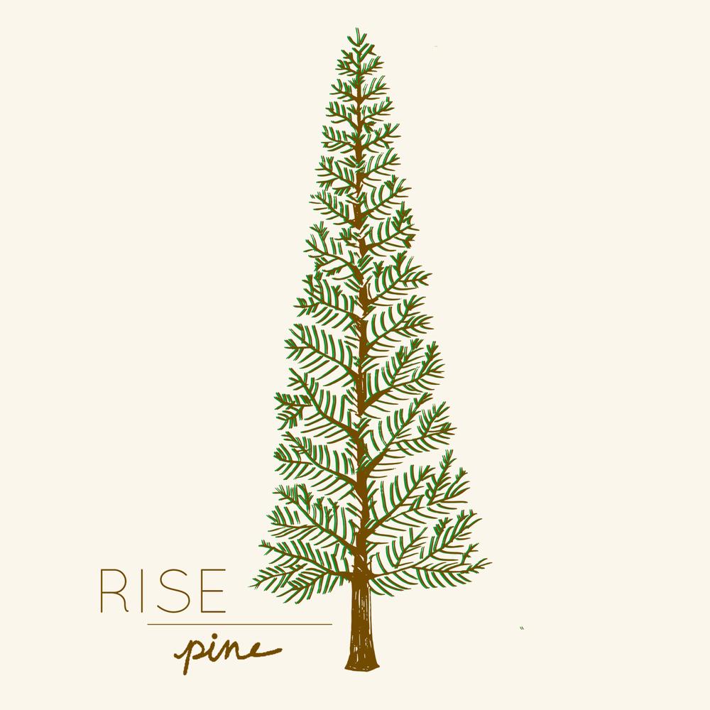 hopepourri_pine.jpg