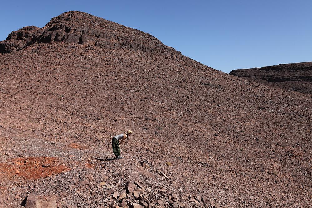 Ouarzazate. 2014