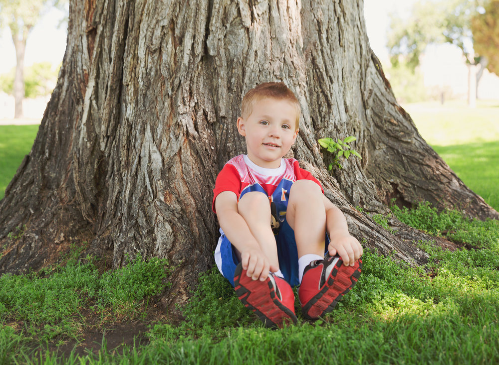 Dear Me Photography Bismarck boy sitting by tree