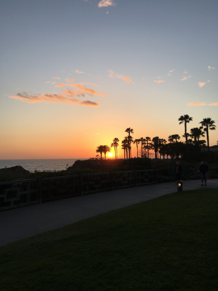 laguna beach sunset