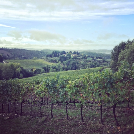 chianti countryside tuscany italy
