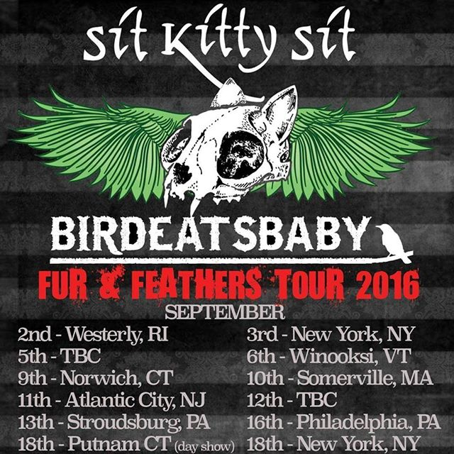 Watch out, #EastCoast:  The #FurandFeathers #Tour will be upon you this #September, as @sitkittysit teams up with @birdeatsbaby (from Brighton, UK) for a memorable string of unmissable events!  September 2, 2016 (Friday) The Knickerbocker Cafe Westerly, RI  September 3, 2016 (Saturday) Fat Baby New York, NY  September 6, 2016 (Tuesday) Monkey House Winooksi, VT  September 9, 2016 (Friday) Strange Brew Pub Norwich, CT  September 10, 2016 (Saturday) PA's Lounge Boston, MA  September 11, 2016 (Sunday) Boneyard Atlantic City, NJ  September 12, 2016 (Monday) Brighton Bar Long Branch, NJ  September 13, 2016 (Tuesday) Sarah Street Grill Stroudsburg, PA  September 15, 2016 (Thursday) 1919  Baltimore, MD  September 18, 2016 (Sunday) (Daytime Show) The Stomping Ground Putnam, CT  September 18, 2016 (Sunday) (Evening Show) Arlene's Grocery New York, NY  For more information, visit www.sitkittysit.com
