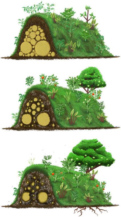 Hügelkultur
