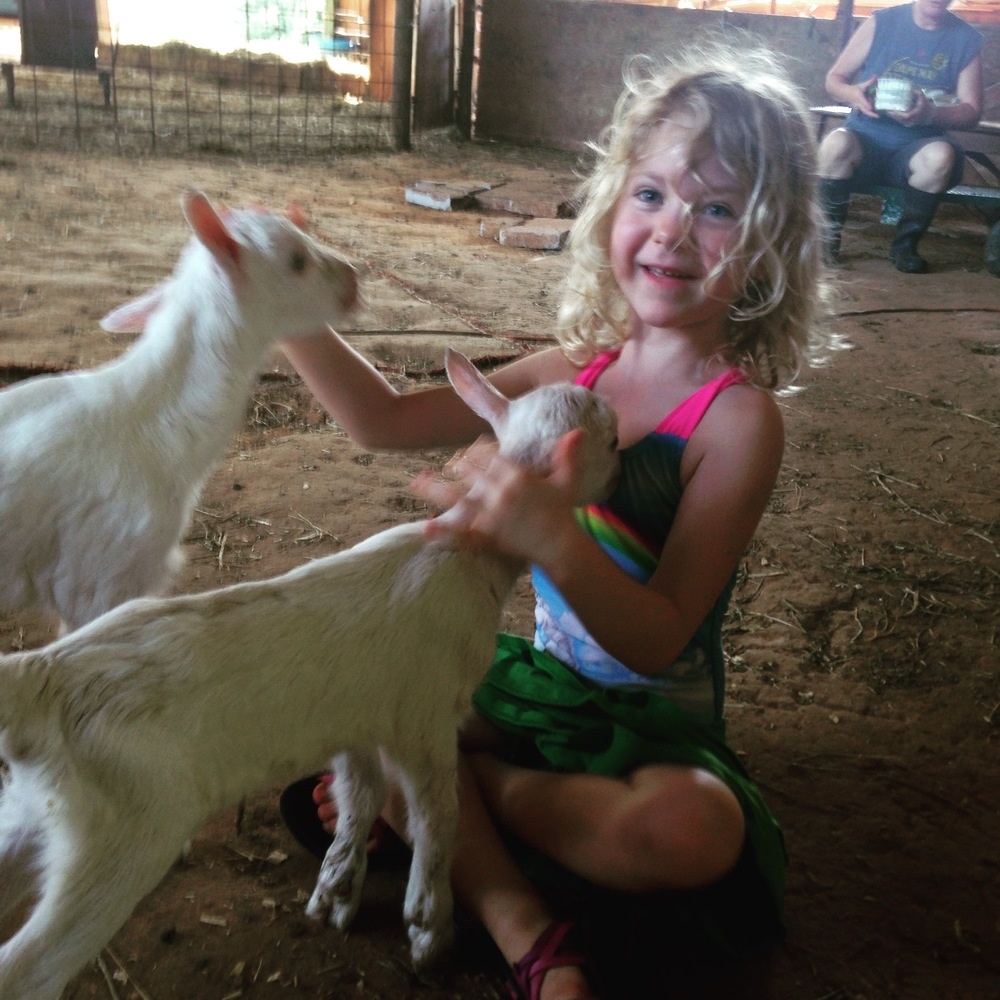 My youngest with the 12-hour old goats at Decimal Place Farm