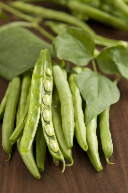 Fromhttp://www.thekitchn.com/don-t-scoff-at-my-southern-appalachian-string-beans-we-know-of-low-and-slow-221712
