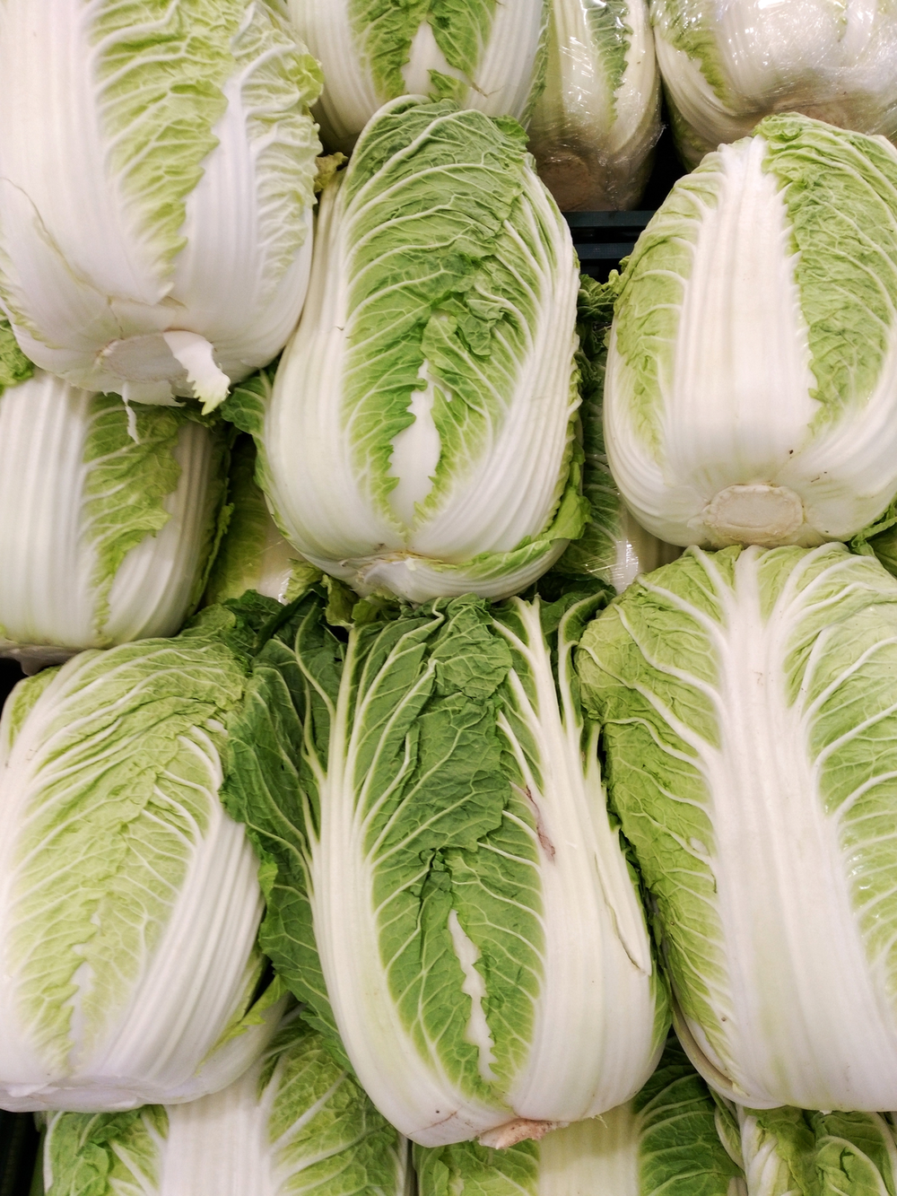 1200px-Napa_cabbages.png