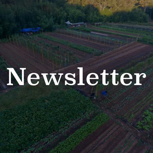 Global Growers Farm Share Newsletter
