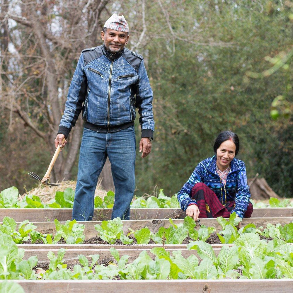 Community Garden Clarkston, GA