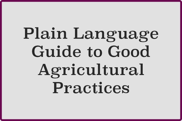 Plain-Language.png