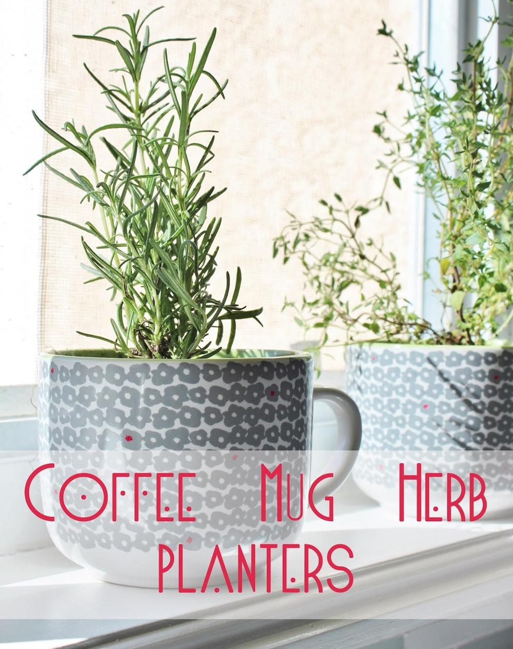 Coffee Mug Herb Planters