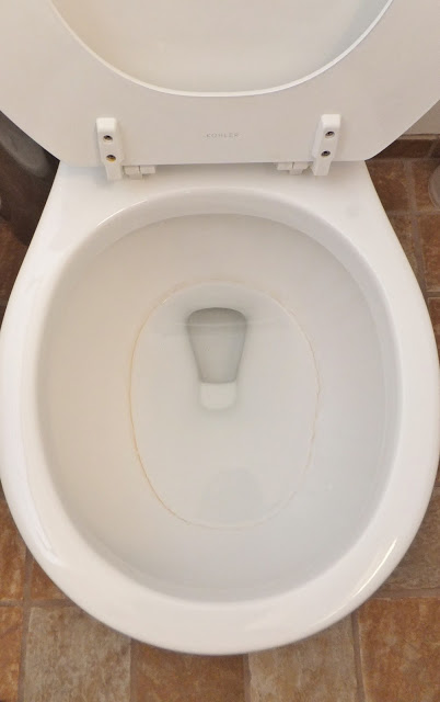 how to clean stubborn toilet rings