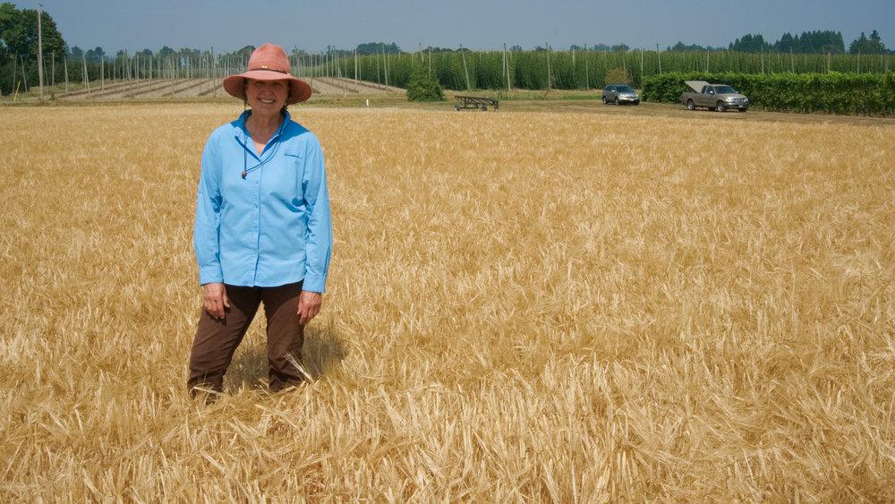Harvest, Gayle & Lyon, 8/9