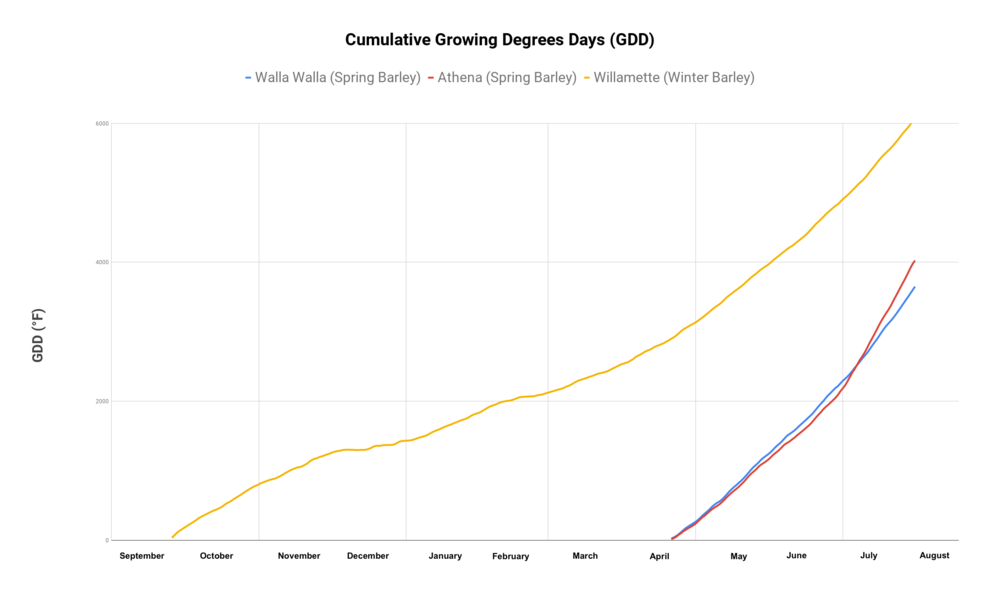 Cumulative Growing Degrees Days (GDD).png