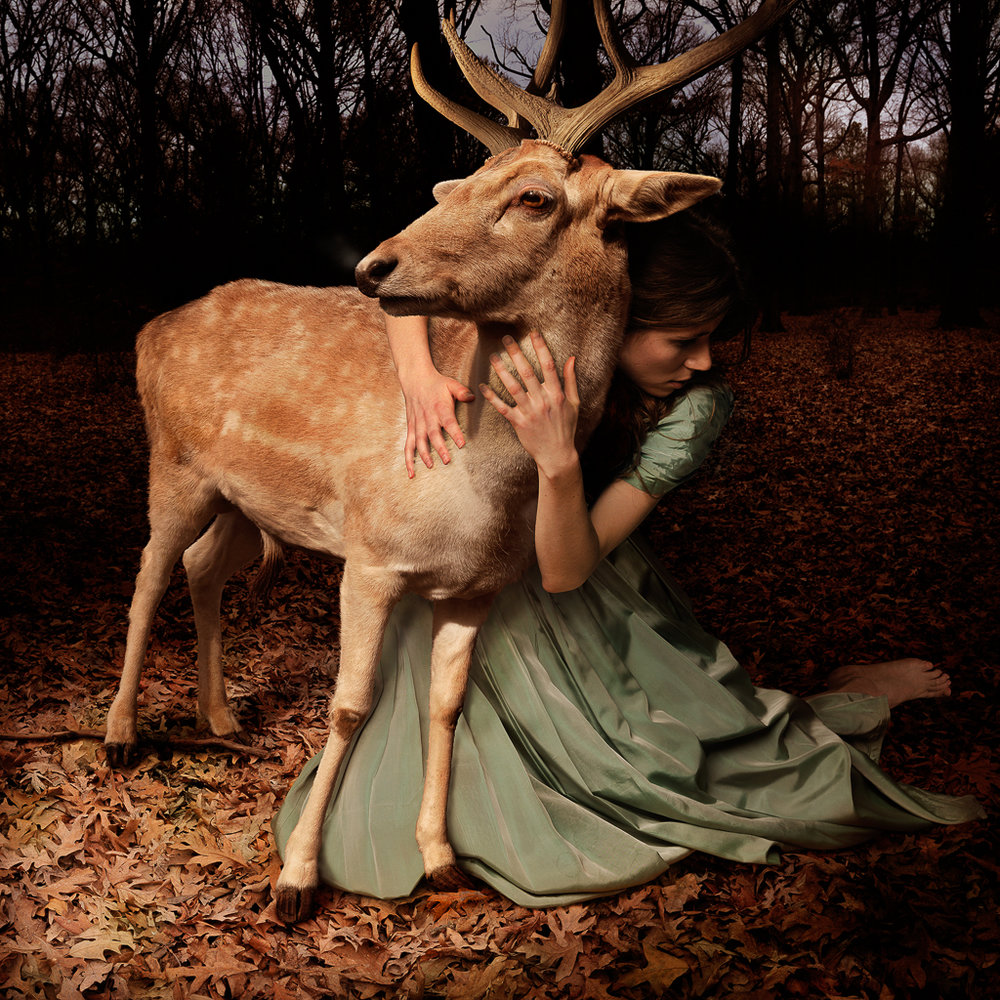 Selected-Tom Chambers - 5. Camouflage (1).jpg