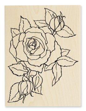 """Timeless Rose"" by Stampendous"