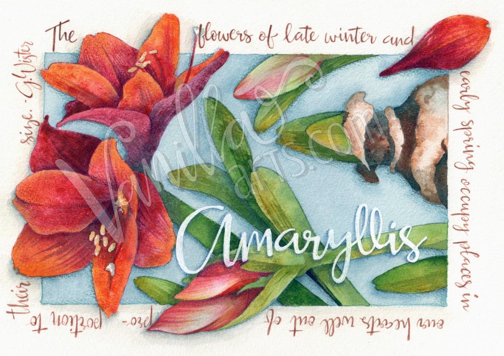 Ink & Water watercolor class |  VanillaArts.com
