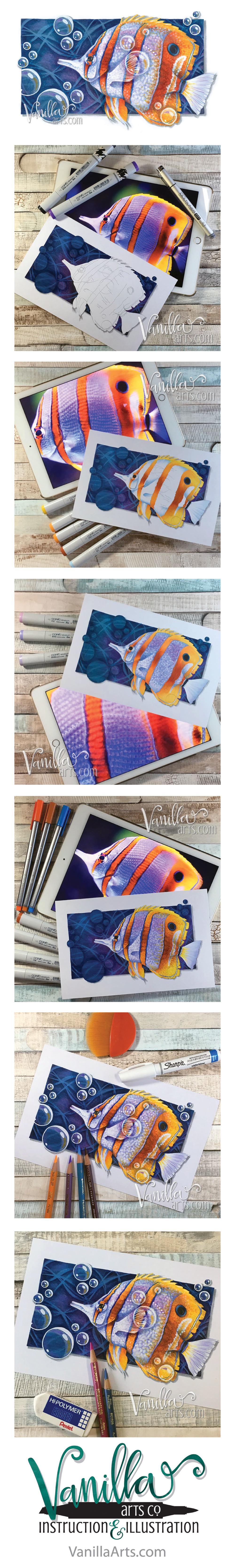 "Advanced Copic Class for August 2016, ""Copperband Butterflyfish"" 