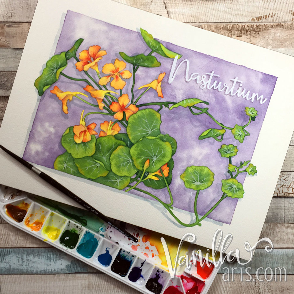 """Nasturtium"" a watercolor lesson for intermediate Copic colorers. Learn to translate coloring skills to paint. 