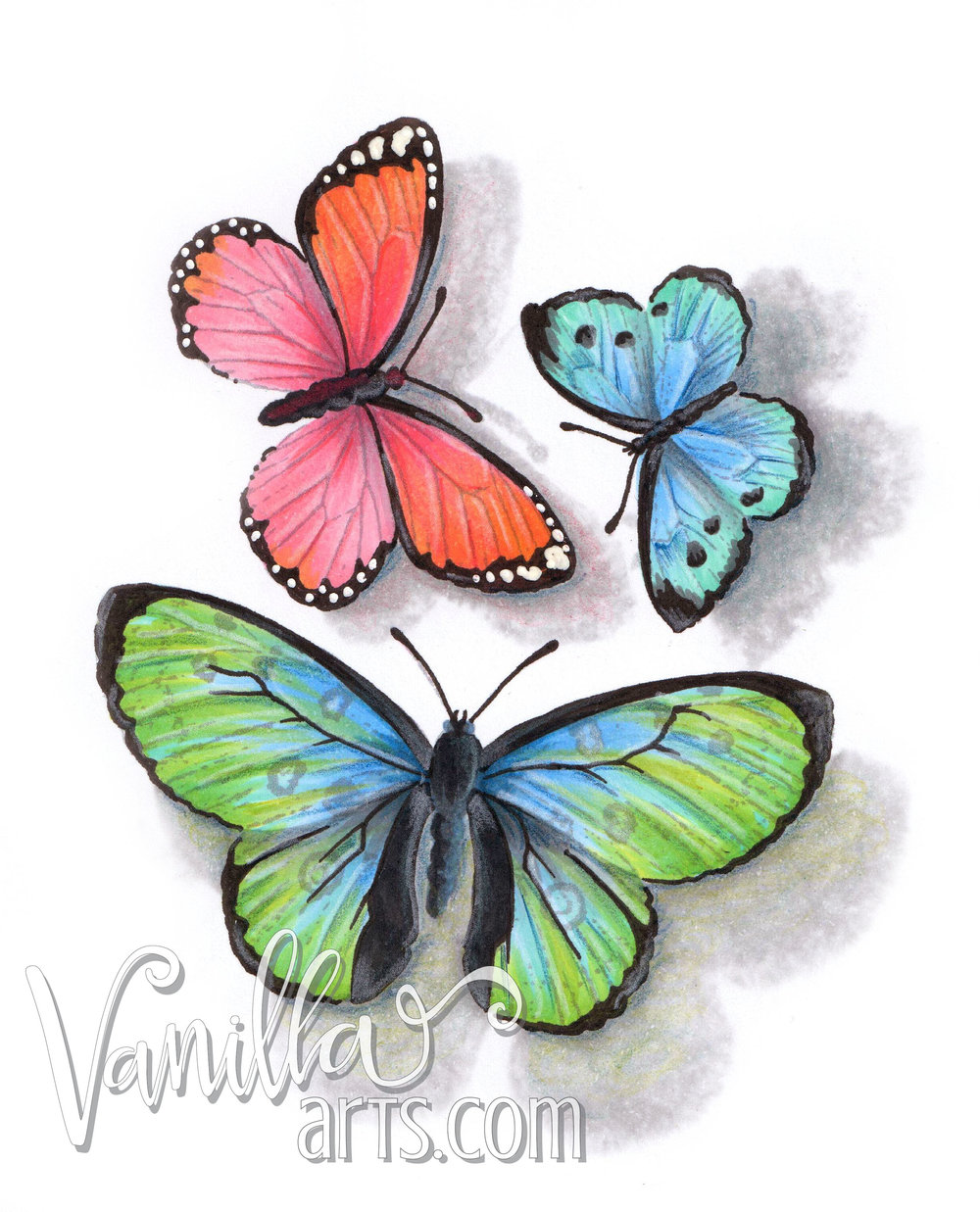 """Butterflies"" a lesson in adding realism through cast shadows 