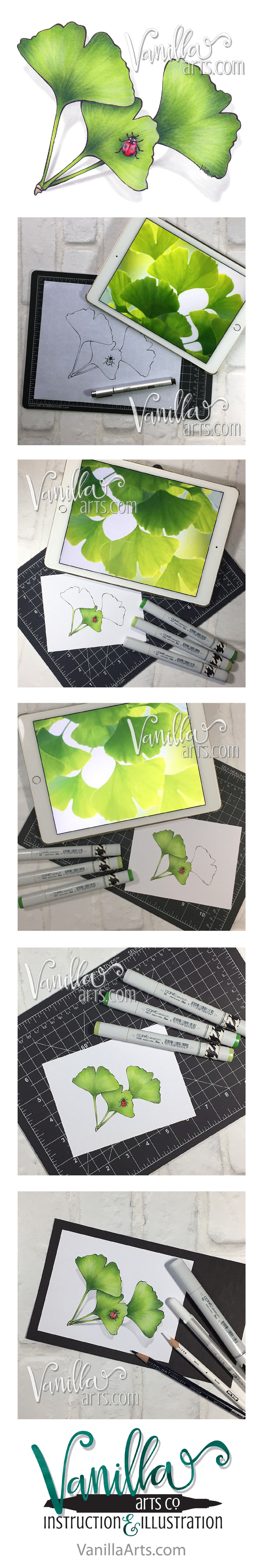 Marker Painting Foundations- online course which changes the way you approach Copic Markers. Week 2 smooth blending lesson. | VanillaArts.com