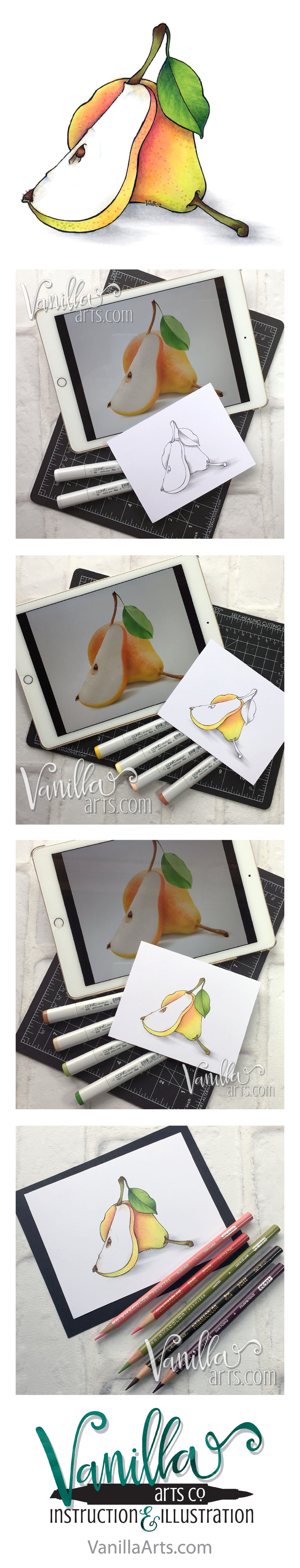 "Beginner Online Course- Marker Painting Foundations, ""Sliced Pear"". Week 6 lesson on layering for depth with Copic Markers. 
